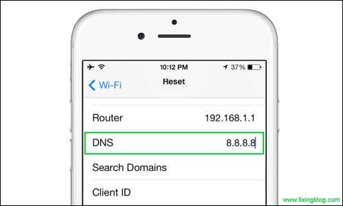 Update Dns to Google Dns in Iphone